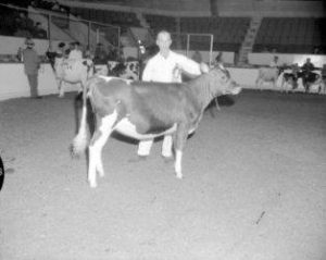 La suite No2 des 150 ans d'agriculture du comté de Richelieu 1849-1999