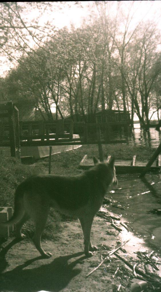 9-L'eau haute dans le chenal de l'Ile aux Fantômes 1970